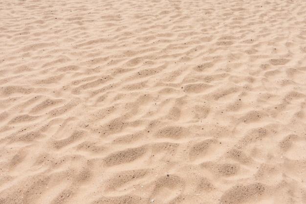 divination sable