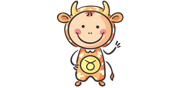 bebe-taureau