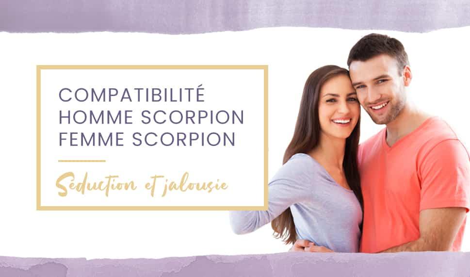 scorpion scorpion