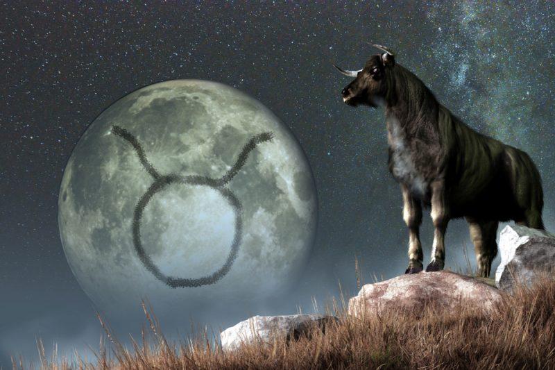signe lunaire taureau